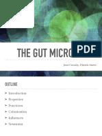 presentation - the gut microbiome