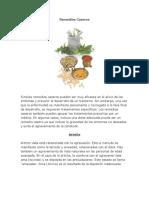 Remedios Caseros.docx