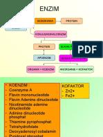 ENZIM biokimia /perikanan/ unpad