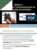 CLASE 15- Mutaciones Genéticas_preadaptativas y Postadaptativas