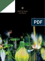 BMCE Bank Au Maroc
