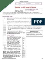 Theory Basics_ 12 Chromatic Tones.pdf