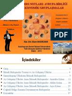 Ch 12 Avrupa Birligi Disindaki Ekonomik Gruplasmalar