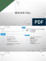 Bolock Cell Exposicionpilar