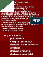 MICOTOXICOZELE (1)