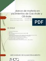 EBM Yacimientos de Gas y Oil Shale