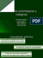 Lesiones Premalignas y Malignas de Piel