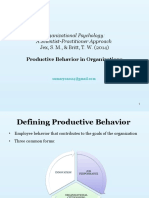 Productive Behavior in Organizations