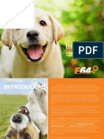 Instapet Ghid F64 Royal Canin