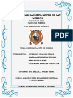 Determinacion de Fierro Informe Nº8 SM