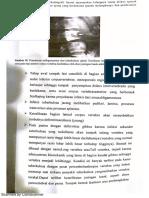 PDF Radio
