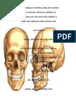 Anatomia Huesos Del Cráneo