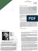 Capitulo 02 Rotondo Neurociencias y Psiquiatría 1ra Ed