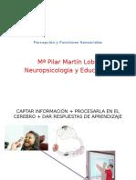 Neurops Infantil - Percepción y Sensorialidad