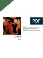 ILIADE di Omero - Libro sesto - Prove di traduzione interlineare con note grammaticali e vocabolario essenziale in linea