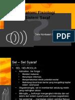 anatomi dan fisiologis sistem syaraf