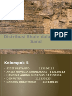 the shale distribution in a shaly sand Rock