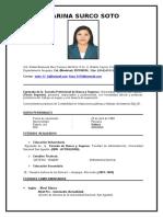 CV Karina Surco Soto