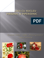 11ALCALOIZI CU NUCLEU PIRIDINIC SI PIPERIDINIC PP1020111.ppt
