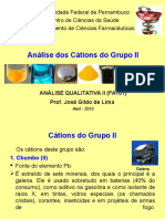 Cátions Do Grupo II