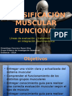 Clasificacinmuscularfuncional 120106062105 Phpapp02 (1)