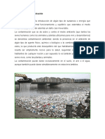 Definición de Contaminación