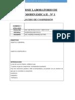 Informe Laboratorio de Termodinámica II