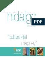 Rutas Gastronómicas de Hidalgo