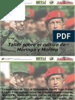 Taller MoringaMoreraESR Rio Tiznado