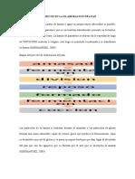 Proceso Bioquimico de Elaboracion Del Pan