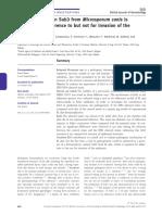 baldo2010.pdf