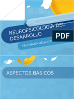 neuropsicologadeldesarrollo-100529175652-phpapp01