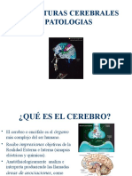 MCM III Cap 2 Neurosicologia