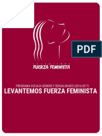 Programa Levantemos Fuerza Feminista