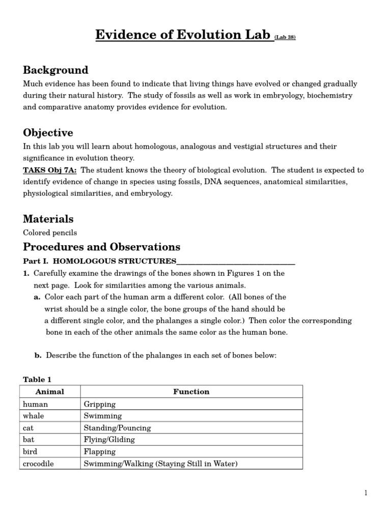 worksheet Evidence For Evolution Worksheet evolutionary evidence lab homology biology evolution