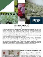 Latin Flowers Farms La Ceja