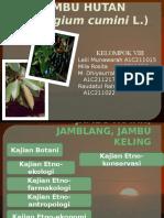 PPT Jambu Air Hutan, Jamblang, Jambu Keling