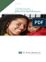 pdf PDA.pdf