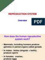 KULIAH 2 Sistem Reproduksi Overview
