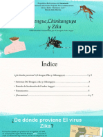 Dengue Chinkungunya y Zika