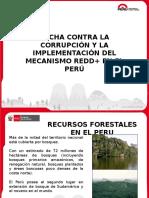 09 Peru - Presentacion AC REDDrrrrrrrrrrrrrrrrrrrrrrrrrrrrrrrrrrrrrrrrrrr