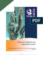 Cultivo de Hippocampus Erectus