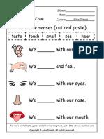 Your BodyThe Five Senses