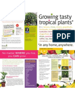 Growing Tasty Tropicals Brochure