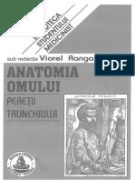 Anatomie Peretii Trunchiului Ranga