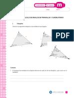 calculo de areas de triangulos 6°