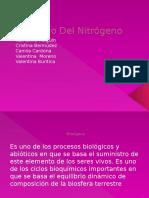 Ciclo-Del-Nitrógeno-10c.pptx