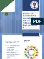 Absorción Excreción y Metabolismo de Las Vitaminas Hidrosolubles