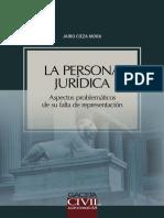 La Persona Juridica Aspectos Problematicos de Su Falta de Representacion