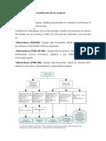 Clasificación de Las Anemias - MONO